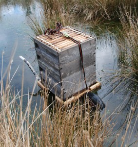 Bee barrow mk  on amphibious duty